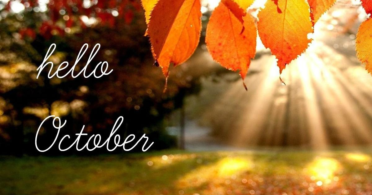 Milyen teendők várnak ránk a kertben októberben?