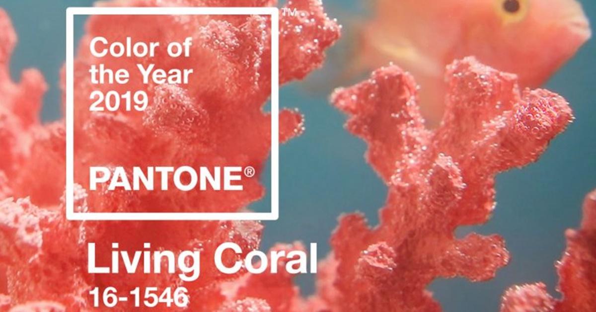 2019 Pantone színe - Íme lerántjuk a leplet az év árnyalatáról!