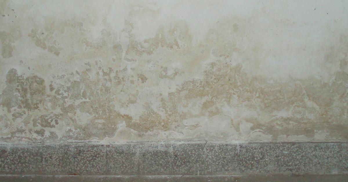Hogyan újítsunk fel erősen nedves, sószennyezett falakat egyszerűen?